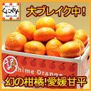 甘平 かんぺい【送料無料】【数量限定】訳あり愛媛甘平(かんぺい)5kg(5kg×1箱)せとかにも匹敵する柑橘