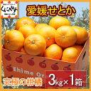 【送料無料】【究極の柑橘】【お試し品】愛媛せとか3kgみかんの大トロ 愛媛県産 産地直送