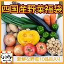 【送料無料】【クール便込】愛媛を中心とした「四国産野菜福袋(...