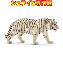 【ポイント10倍&カタログ&動物消しゴムプレゼント!】シュライヒ ホワイトタイガー 14731 動物フィギュア アジア オーストラリア asia australia 虎 タイガー tiger schleich あす楽