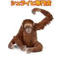 【ポイント10倍&カタログ&動物消しゴムプレゼント!】シュライヒ オランウータン メス 14775