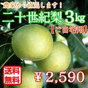 二十世紀梨 ご自宅用 訳あり 3kg(7〜10玉) 鳥取県産...