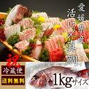 【送料無料】 活け〆の真鯛を丸ごとお届け!1kg前後(原体サイズ) ◆愛媛を筆頭に最良の鯛をお届けし