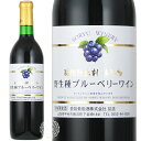 【よりどり6本で送料無料】蒼龍 無添加 野性種ブルーベリーワイン 720ml