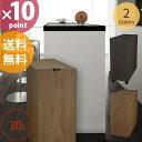 【送料無料】日本製 木目調 ダストボックス BOSK バスク リビングペール 30L [橋本達之助工芸]【送料無料】【10P05Nov16】【ポイント10倍】