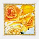 「アンバークウィーン」アニー バードラット【通信販売】(ミニゲル アートポスター[絵画通販])黄色い花 きいろ 花 バラ ばら 薔薇 絵 絵画 アート 花の絵【壁掛けフック付き】【絵のある暮らし】