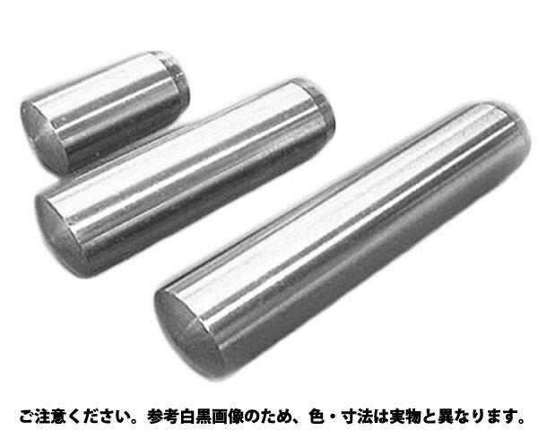 ヘイコウピン(Bシュ(ヒメノ 材質(ステンレス) 規格(8X65) 入数(100) 螺子・釘・ボルト・ナット・アンカー・ビス・金具シリーズ