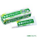 《A》(入れ歯用接着剤)アース ポリグリップ無添加 75G【D】