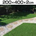 【エントリーでP3倍】【送料無料】ロングパイル人工芝 200cm×400cm(厚さ2cm) LP-2024 アイリスソーコー
