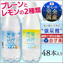 国産 炭酸水 500ml 48本 送料無料 蛍の郷の天然水あす楽対応 送料無料 レモン グレープフル