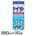 【30本】神戸居留地 サイダー 缶 250ml 炭酸 炭酸ジュース 炭酸飲料 国産 富永貿易 【D】