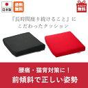 【送料無料】ドクターエル EX クッション低反発 高反発 全...
