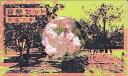 1995 平成7年花のまわりみち八重桜イン広島 貨幣セット