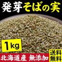 そばの実 北海道産 1kg 発芽そばの実 誉(ほまれ)【ネコポス送料無料】国産 無添加