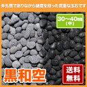 黒和空 30~40mm(中)【送料無料】