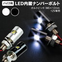 LED ナンバーボルト ボルト型LED ナンバーボルト 平面 アルミ削り出し 3chips SMD シルバー ブラック 選択制(ネコポス限定送料無料)