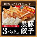 餃子 黒豚餃子 本餃子 ぎょうざ  業務用 20g×18個入り×3 /黒豚餃子3/