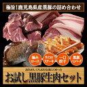 鹿児島産 黒豚 かごしま産黒豚 ハンバーグ 一口餃子