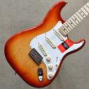Fender American Professional Stratocaster Maple Fingerboard 〜Sienna Sunburst〜
