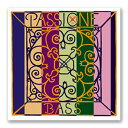 Pirastro ''PASSIONE''【4E】【新品】【日本総本店在庫品】
