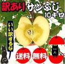 【青森 りんご】【訳あり サンふじ りんご 10kg】【送料...