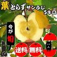 【青森 りんご】【葉とらず サンふじ りんご 5kg】【送料無料】りんご農家自身が直接販売だから安い!!おいしい