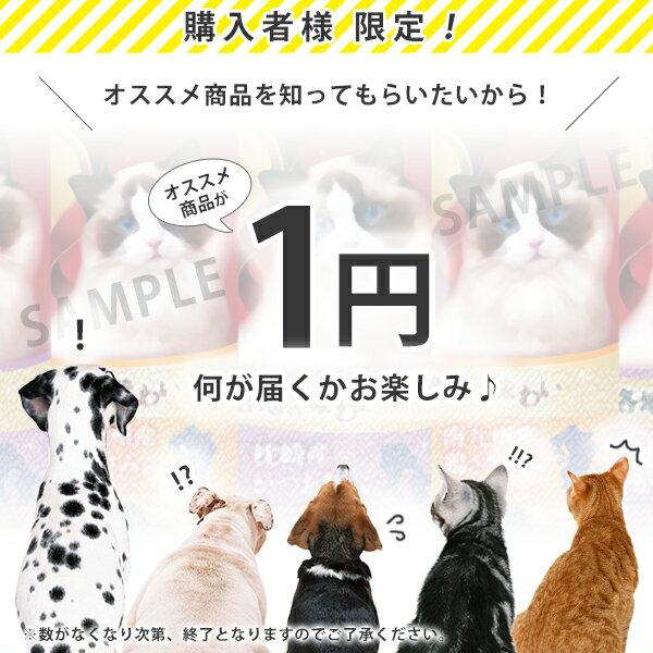 ご購入者様限定 | キャットフード お試し 1円サンプル 【猫 おやつ】【猫用品】