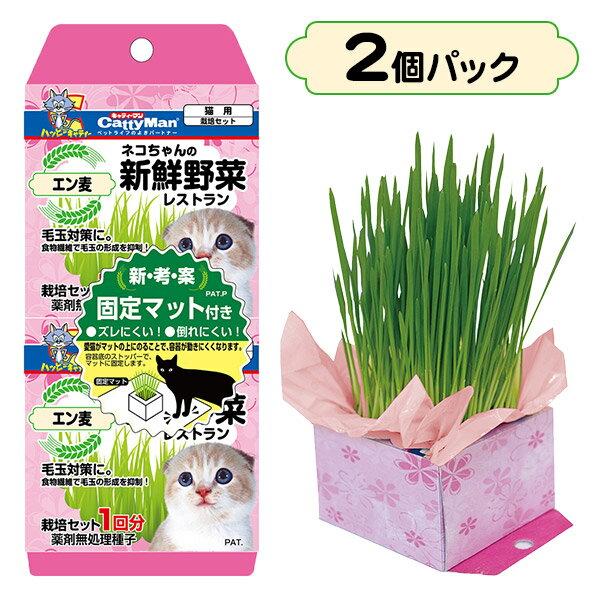 キャティーマンネコちゃんの新鮮野菜レストラン2個パック猫草/キャットフード/猫用おやつ/猫のおやつ・