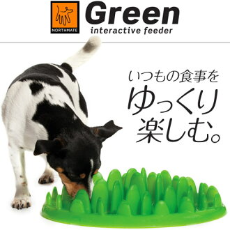 NORTHMATE綠色饋線(GREEN interactive feeder)[供早食有,供防止/狗的餐具/貓的餐具/狗使用的餐具/貓使用的餐具/食物盤子][狗用品/貓、貓、貓/寵物用品]