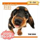 THE DOG カレンダー 2020年 ダックスフンド ■ CALENDAR カレンダ? カレンダ ポスター 壁掛け ブックレット 犬 ドッグ ドック【あす楽対応】