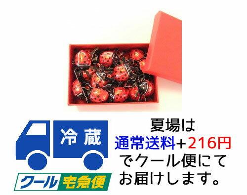 【オーガニックフォレスト】 【Ladybird】...の商品画像