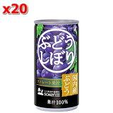 【創健社】ぶどうしぼり(缶) 190g× 20本セット(箱)【05P03Dec16】