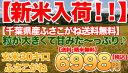 Img62312758