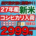 Koshigen_10k_2999