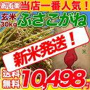 29年産新米入荷 千葉県 ふさこがね 玄米 30kg コシヒカリを超えたうまさ 玄米食でも安