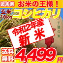 29年産 コシヒカリ 玄米 10kg 千葉県 【送料無料】【精米無料】 精米(白米)発送可 10