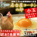 名古屋コーチンの卵小玉サイズ(SS〜Sサイズ)30個入り(内割れ保障3個含む) 【送料無料