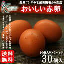 こだわりのエサを食べてうまれた櫛田養鶏場のおいしい赤卵【30個入り(破卵保障3個含む
