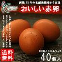 櫛田養鶏場のこだわりのエサを食べてうまれた美味しい赤卵【40...