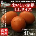 【愛知●尾張】おいしい赤卵LLサイズ40...