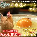 ☆愛知が誇るブランド卵☆名古屋コーチンの卵【20個入り(破卵...