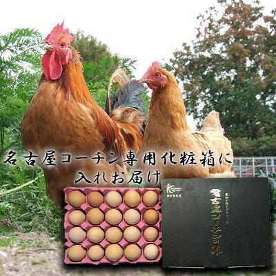 贈答用☆愛知が誇る高級ブランド卵☆名古屋コーチ...の紹介画像2