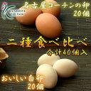 【愛知●尾張】高級名古屋コーチンの卵(20個入り)+おいしい白卵(20個入り)【送料無料】合計40個入り 食品/卵/鶏卵/40個/お得/