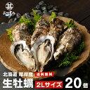 【送料無料】生牡蠣2Lサイズ20個 北海道厚岸産(殻付き)