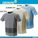 グラビス Tシャツ メンズ 半袖 GRAVIS JPN BORDER X TEE 218177【 グラビス ボーダー X Tシャツ】 ●【512JAJA-04tdpd】【02P02Aug14】