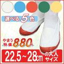 Vシューズ 校内 102型 上履き 上靴 スクールシューズ 大人 メンズ レディース (22.5〜28.0cm)