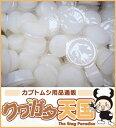 クワガタ・カブトムシ成虫のエサ虫ゼリー!国産プロゼリー 18g×50個入り食べ易い広口タイプ(ワイドカップ)かぶと虫、くわがたむし用