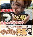 国産カブト幼虫3頭付き!完熟マット10L!幼虫無料!カブトムシの産卵・幼虫飼育に絶対オススメ!!発酵マット《違いを…