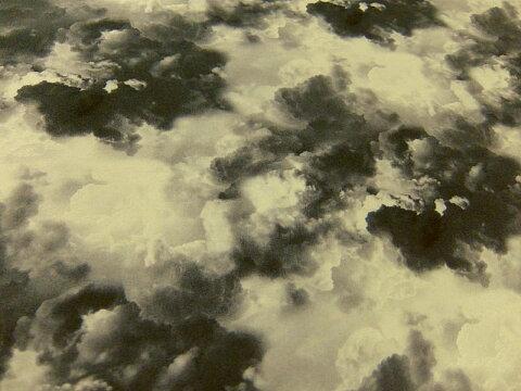 生地 布 輸入 USAコットン タイムレストレジャーズ WICKED Dark Clouds ウィキッド ダーククラウド C3763CLOUD Timeless Treasures 邪悪な 暗い雲 商用利用可能