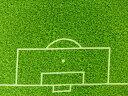 【楽天ランキング入賞商品】パネル柄 生地 布 USAコットン スポーツライフ3 サッカーグラウンド SRK14616-47 ロバートカフマン ロバートカウフマン 商用利用可能10P03Dec16